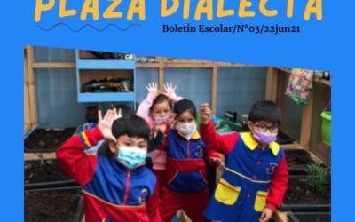 Plaza Dialecta Boletín Escolar #03